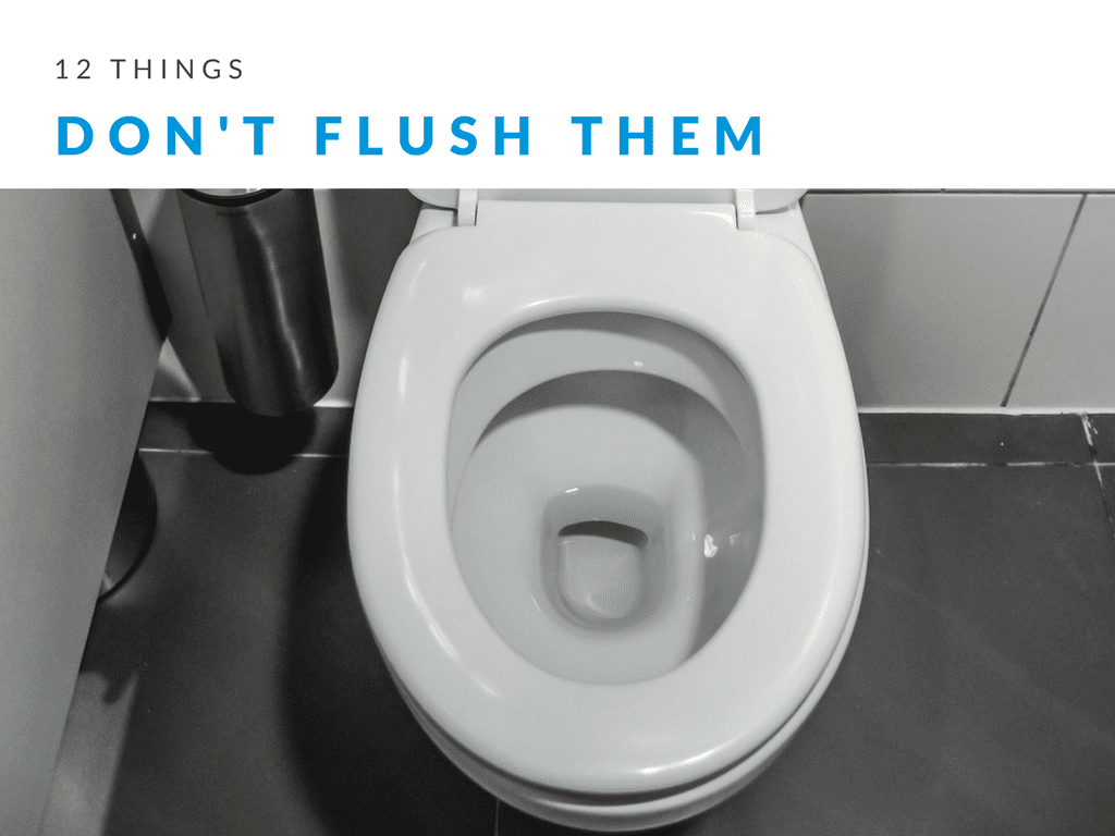 12 Things That Should Never Be Flushed Down Your Toilet