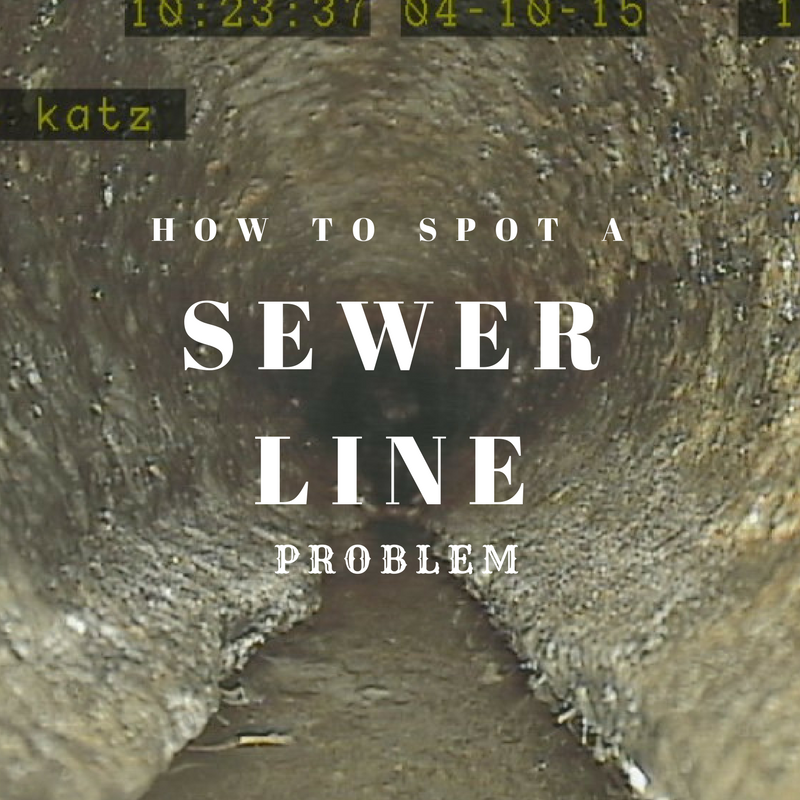 How to Spot a Sewer Line Problem