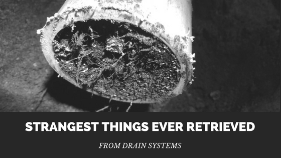 Strangest Things Ever Retrieved From Drain Systems
