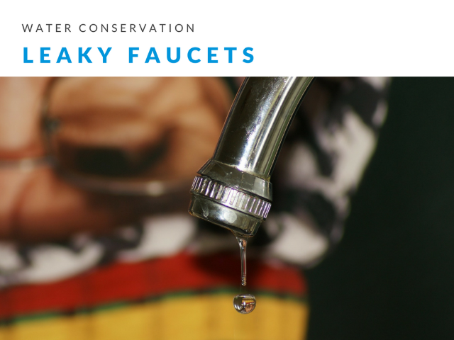 Water Conservation Fixing Leaky FaucetsWater Conservation Fixing Leaky Faucets